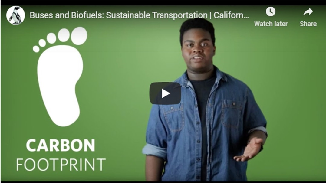 Buses and Biofuels: Sustainable Transportation video