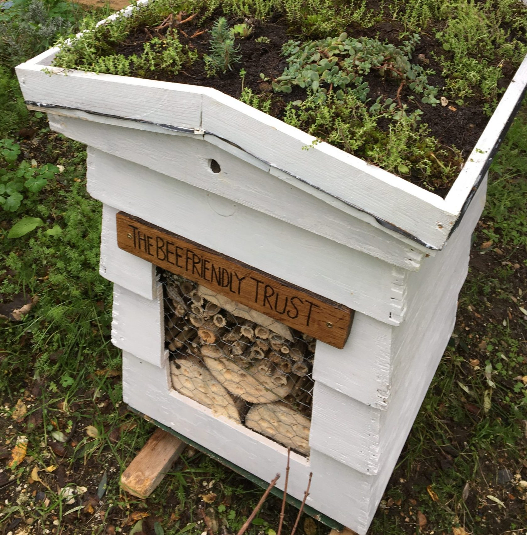 A new lease of life for an old bee hive at Lewes Station