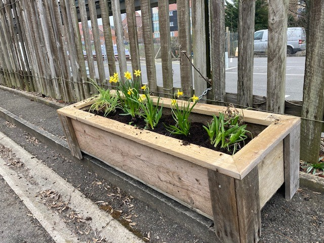 Buxted station new platform planters