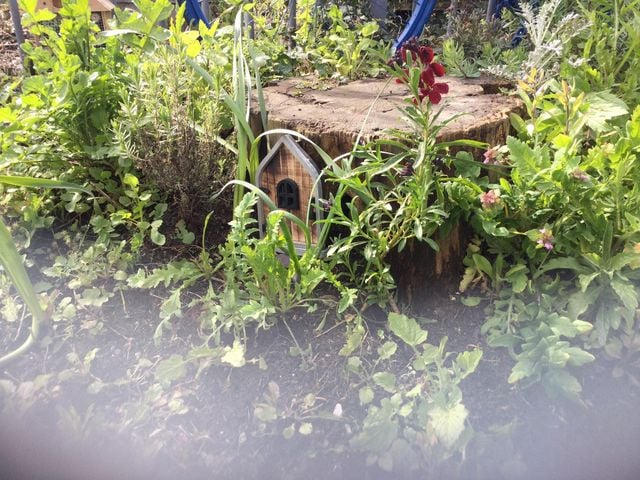 Fairies have moved into Lancing station's garden