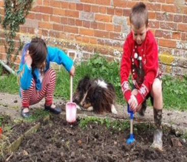 Arundel Bee Friendly Project gets off to a good start as schoolchildren sow the first seeds