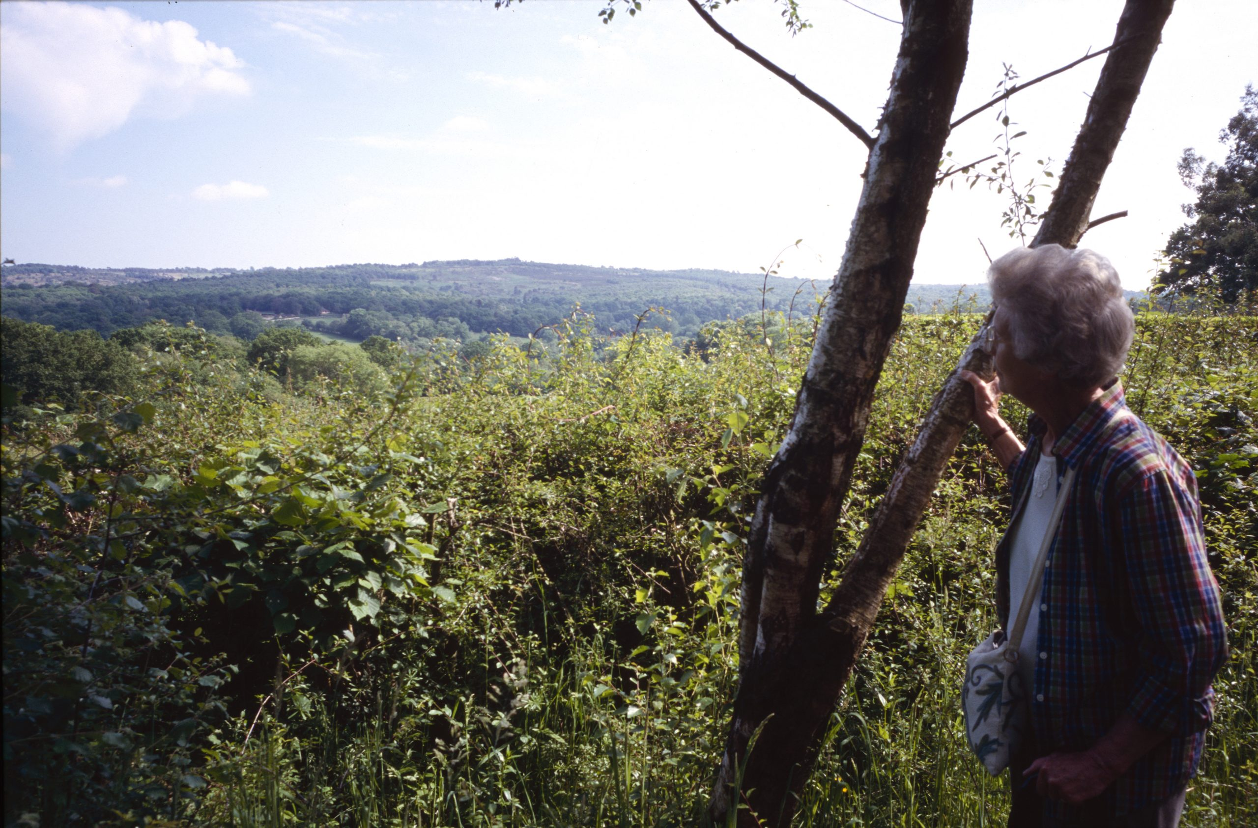 Train as a walks leader with the North Downs Way