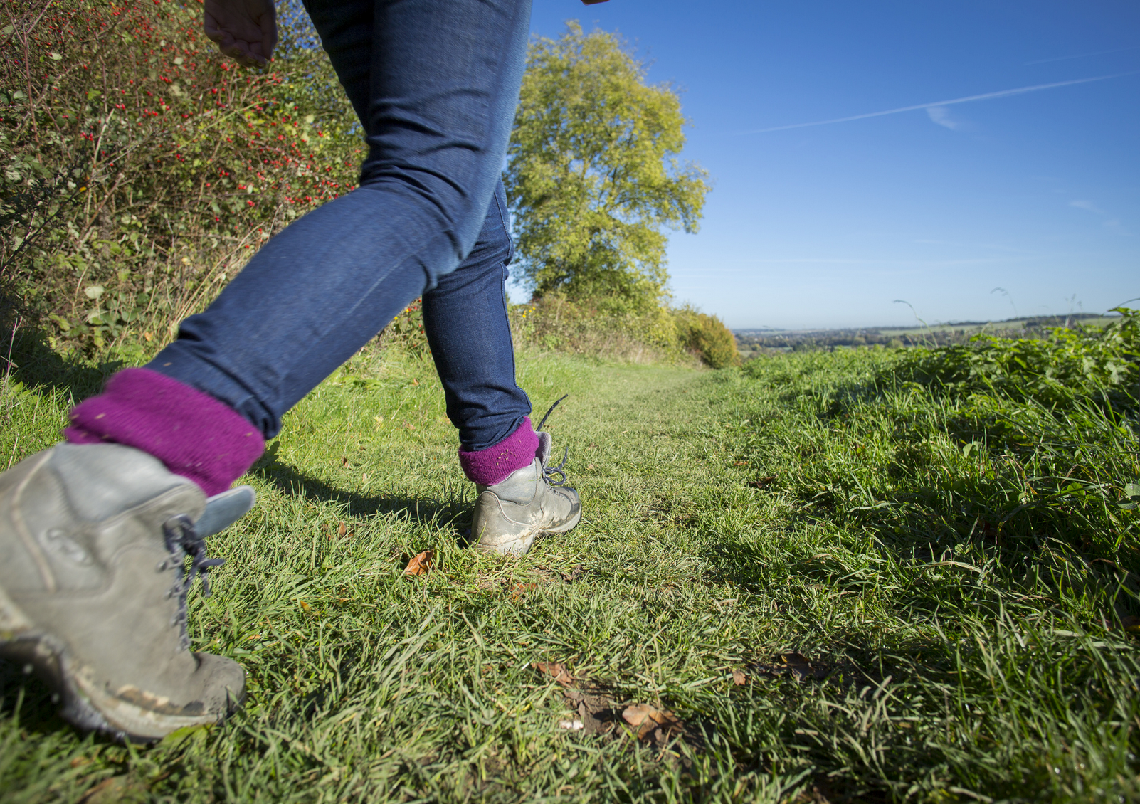 Are you looking for a new walking route to try this weekend?