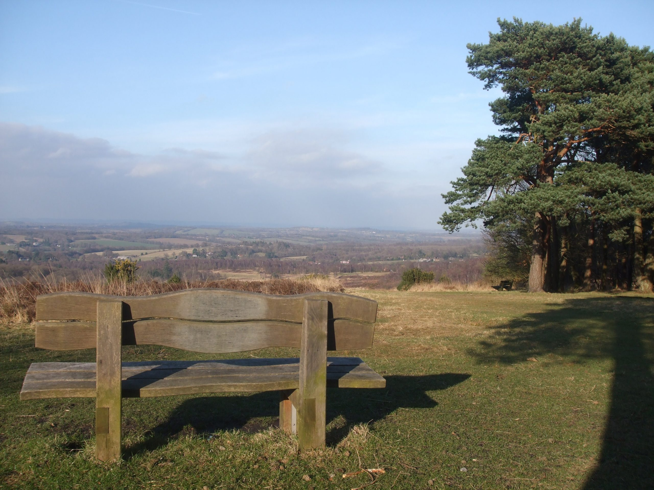 Parking Charges to be Introduced on Ashdown Forest?
